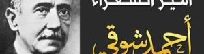 أحمد شوقى .. رضى الله عنه
