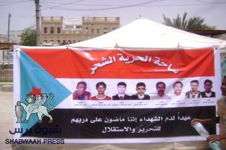 خاص لـ شبوة برس - الشحر تحيي المهرجان الاول لذكرى شهداء المدينة الـ 8