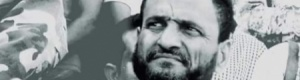 مساعٍ للإطاحة بـ(شلال)..: الشرعية اليمنية.. شروط لإزاحة الجنوب (تقرير)