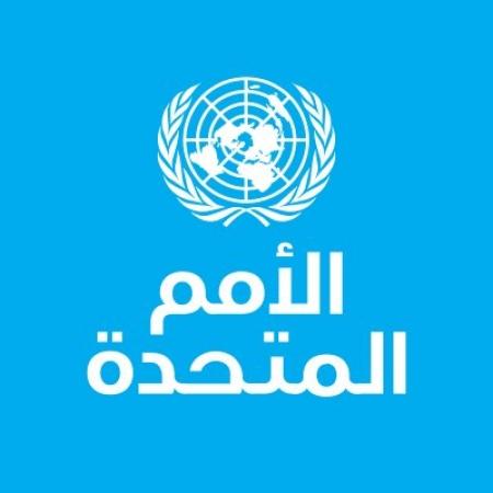 أمين عام الامم المتحدة يعلن عن نشر قوات أممية بالحـديدة قريباً